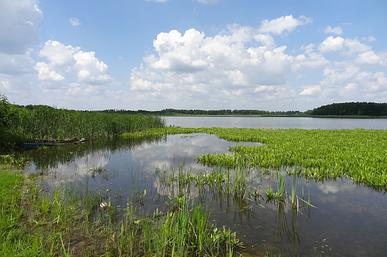 Озеро Пещанское