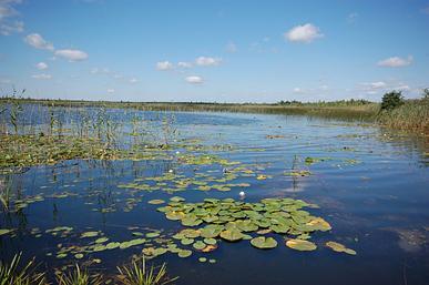Озеро Озерцо